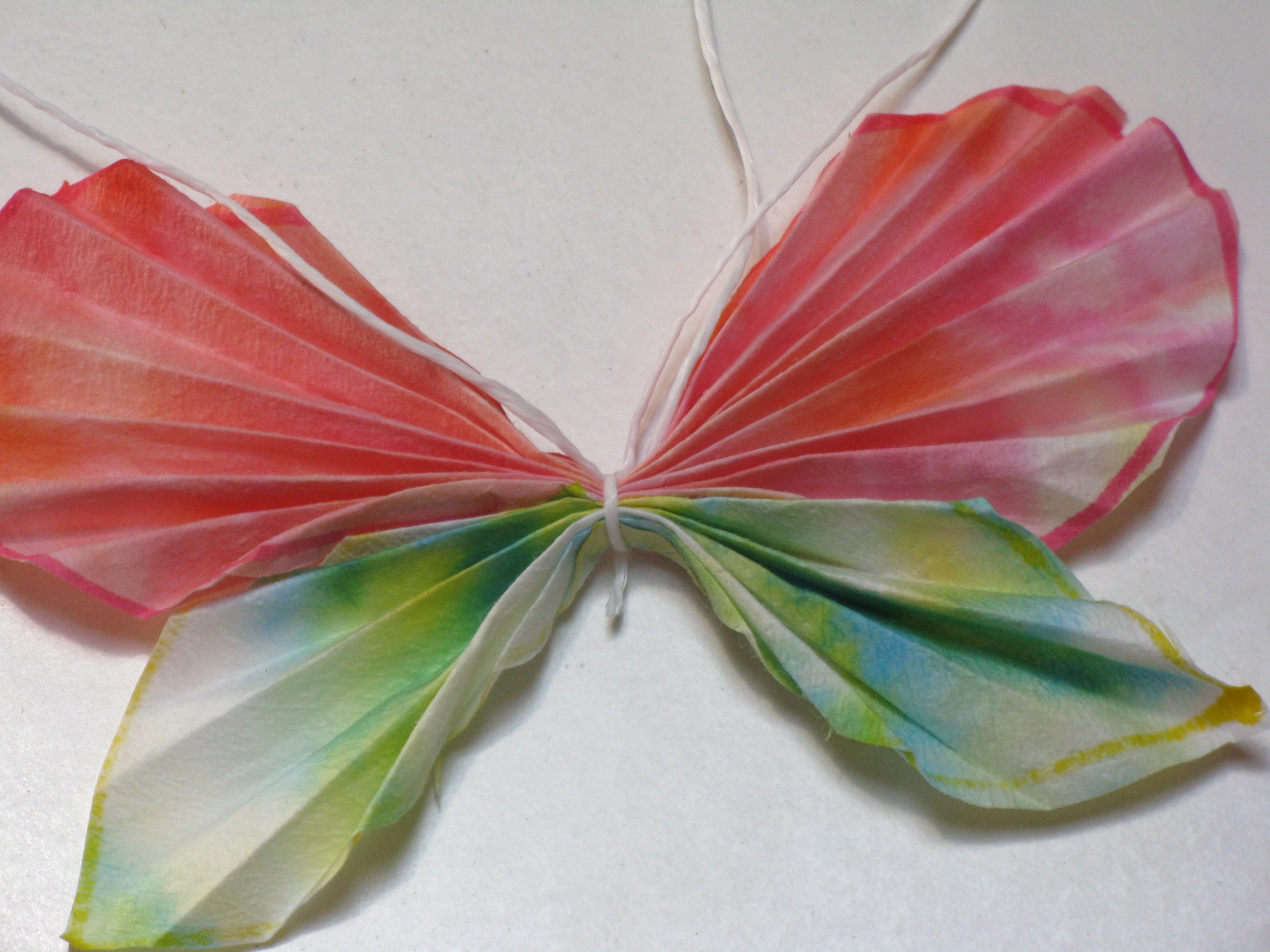 Essay on butterfly