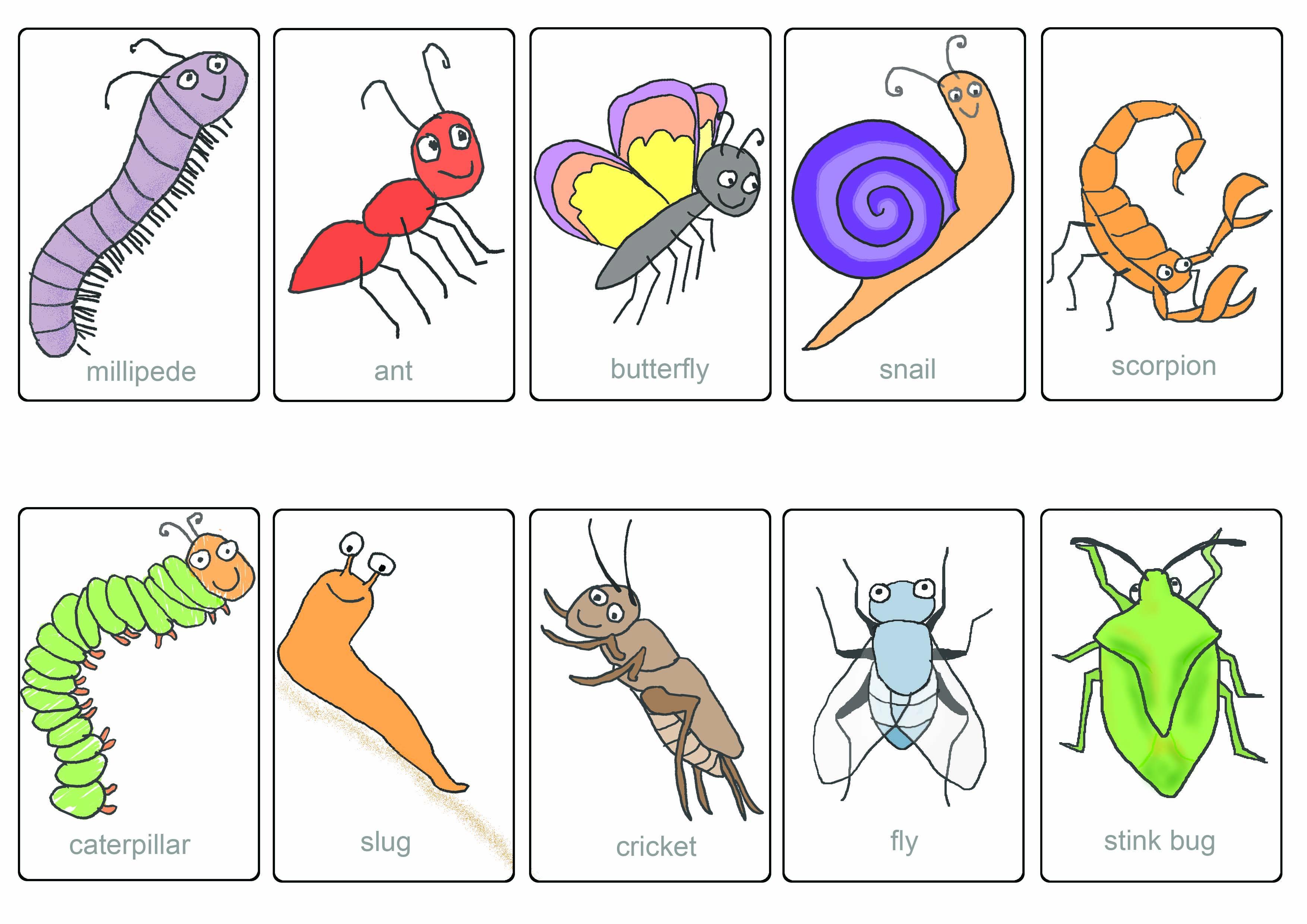Which Bug is Buggin Yo...