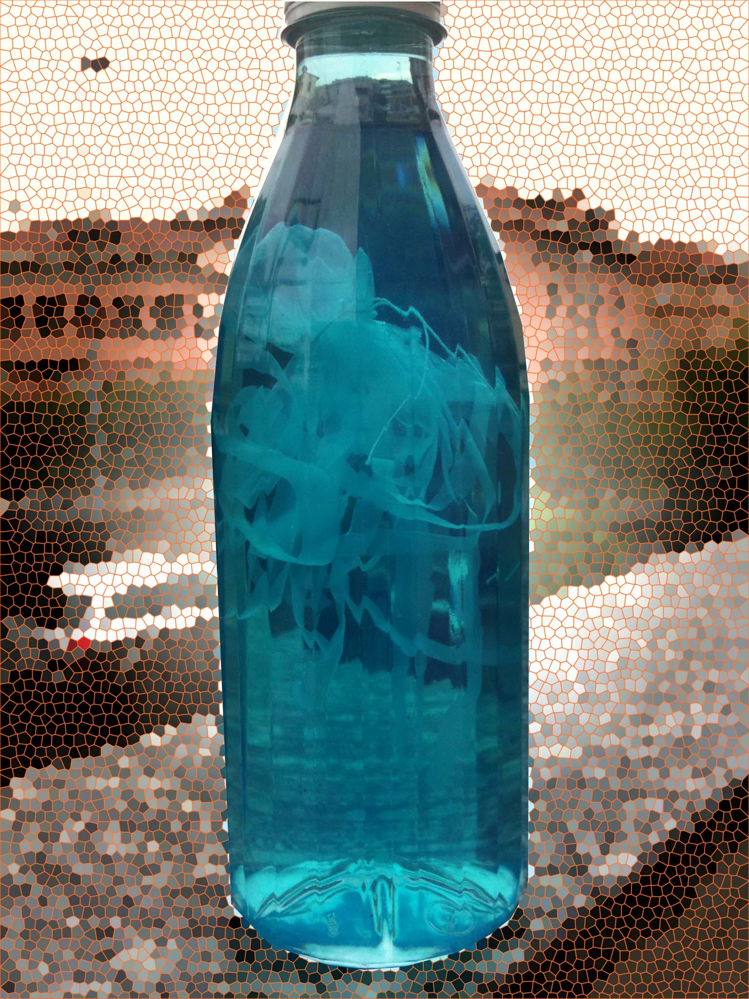Outdoor Sports Hiking Contigo Cortland AutoSeal Infuser Water Bottle 770ml 26oz